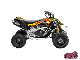 Can Am DS 450 ATV Spirit Graphic Kit
