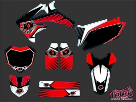 Honda 250 CRF Dirt Bike Factory Graphic Kit