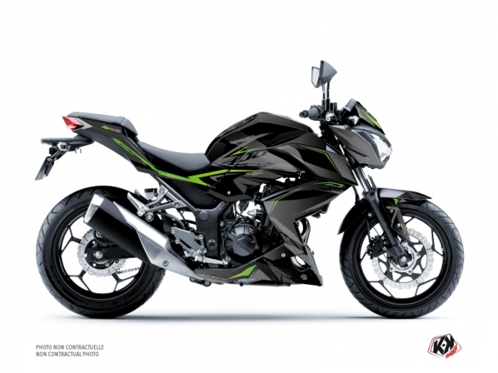 Kawasaki Z 300 Street Bike Airline Graphic Kit Black Green