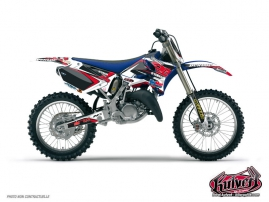 Yamaha 125 YZ Dirt Bike Replica Team 2b Graphic Kit Maxime DESPRES 2010